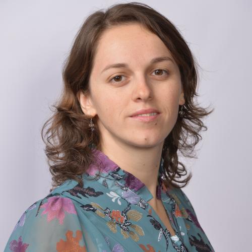 Mihaela Mosnegutu - Projects Delivery Coordinator at Catalyst Solutions